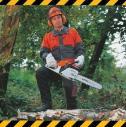 Wycinka drzew trudnych - Drzewa Expert Wroclaw i okolice
