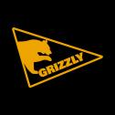 Grizzly web studio Opole i okolice