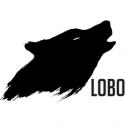 Aplikacje szyte na miarę - LOBO Poznań i okolice