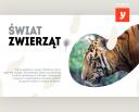 Świat zwierząt - materiały graficzne