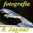 Jaguar i fotografa - Arem P.W. Katowice, Opole, Kraków, Wrocław, Kielce Wałbrzych i okolice