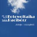 Ekologia i oszczędność - Aleksander Kapitulewski Racibórz i okolice