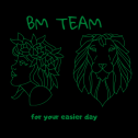 BM Team Bulkowo i okolice