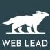 Web Lead